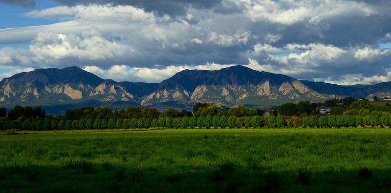 Boulder Flatirons Tree Fence