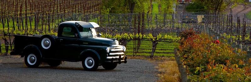 Dodge W Pick-up Early 50's Napa, CA