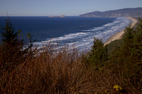 Cape Lookout, OR
